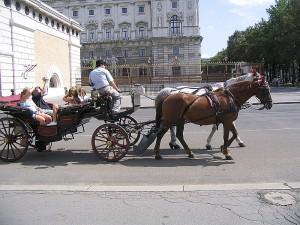 Транспорт Австрии. Вена.